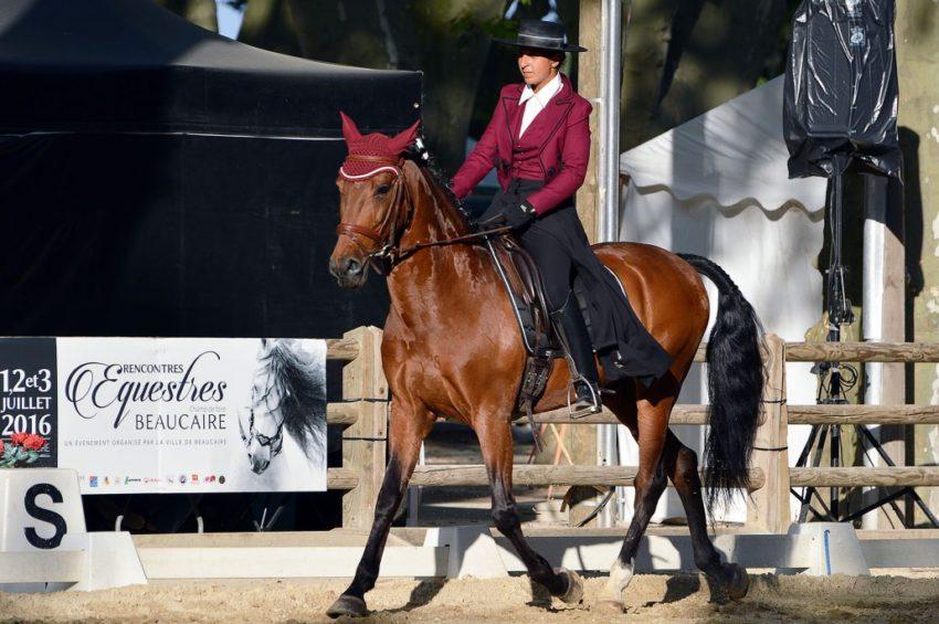 Rencontre Equestre Beaucaire 2011